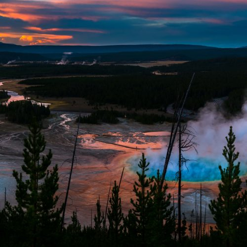 gayser Yellowstone park